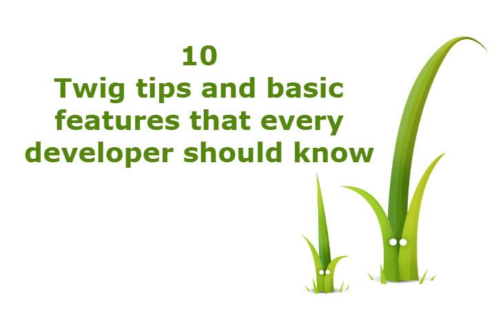 10 Twig tips and basic features that every developer should