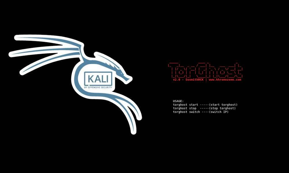 How to route all the machine Traffic Through TOR in Kali Linux