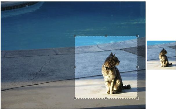 JCrop image cropping jQuery