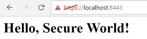 Secure World Message Https Express
