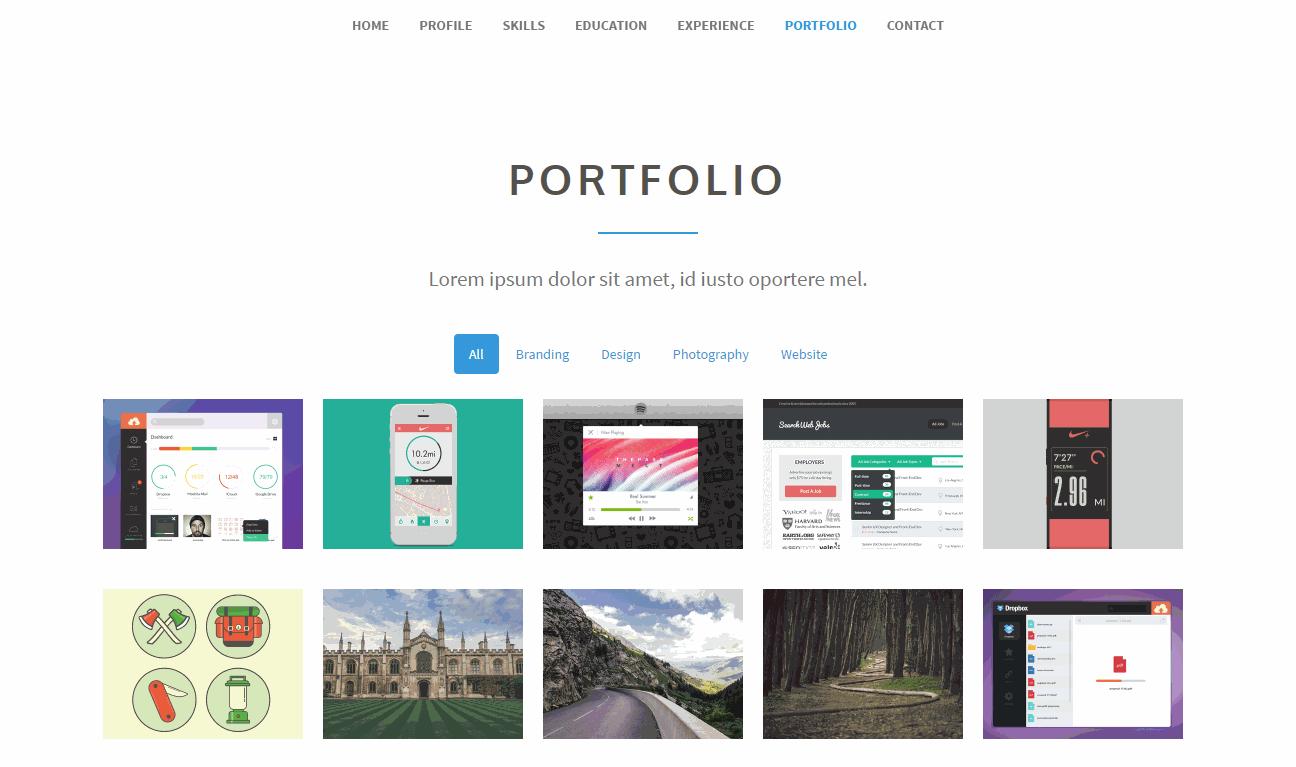 Articulate premium/portfolio