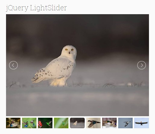 jQuery Light Slider