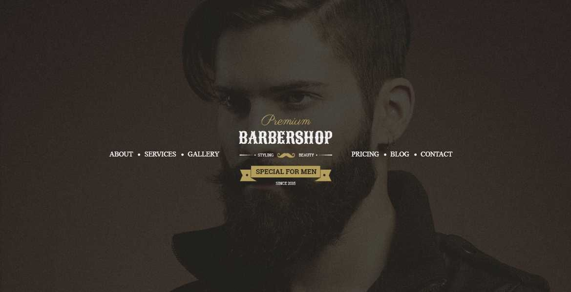 Barbershop Hair Saloon Spa
