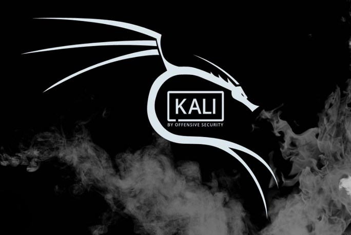 Kali Linux Pentesting Hacking OS
